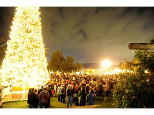 Tree_lighting_oc_register